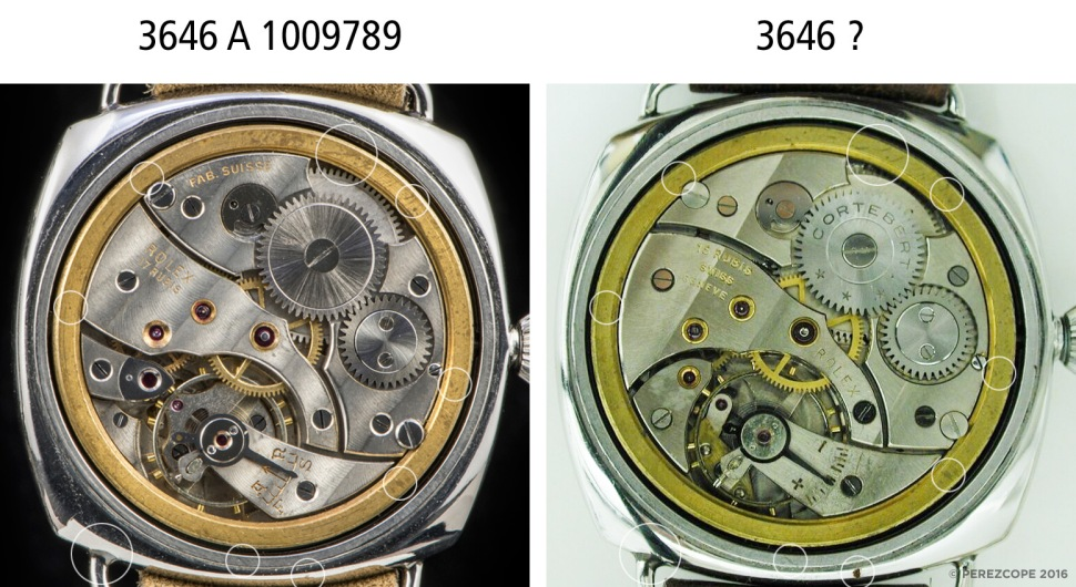 comp_panerai_1009789_cases_back.jpg